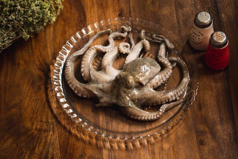 fresh octopus in greece