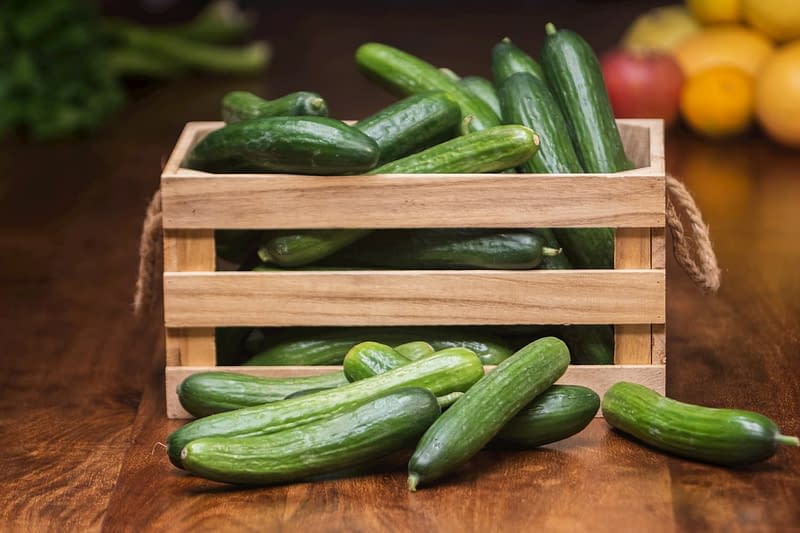 Photography of cucumbers getting ready for being pickled